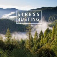 Stress busting